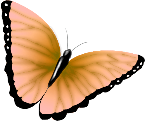 clipart_butterfly